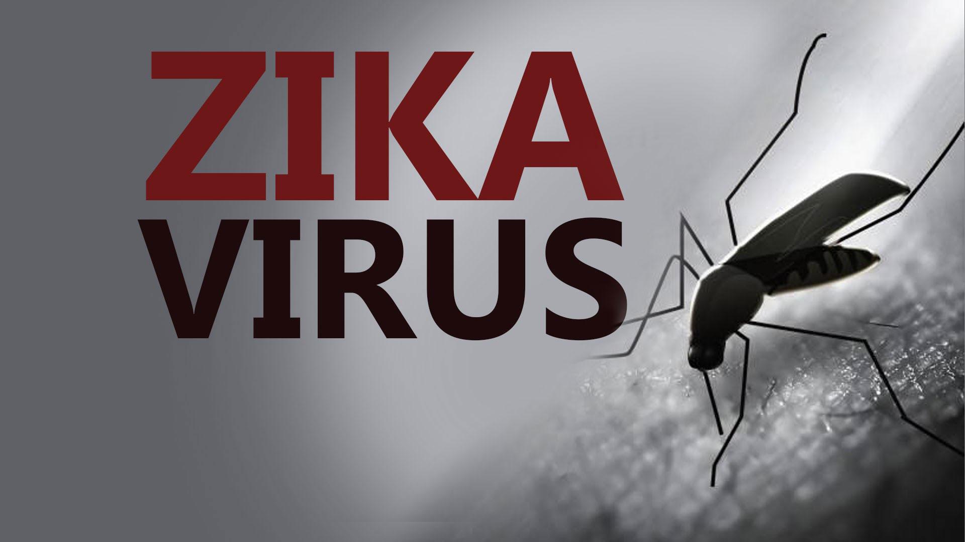zika surrogacy
