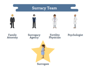 how much surrogacy cost