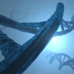 PGS and surrogacy