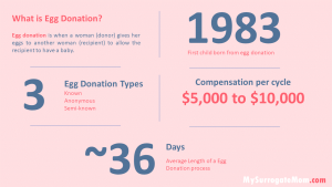 Egg Donation Stats