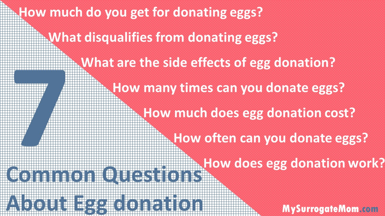 common questions about egg donation