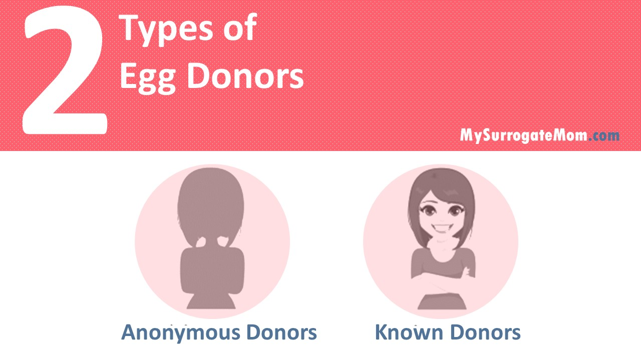 types of egg donor