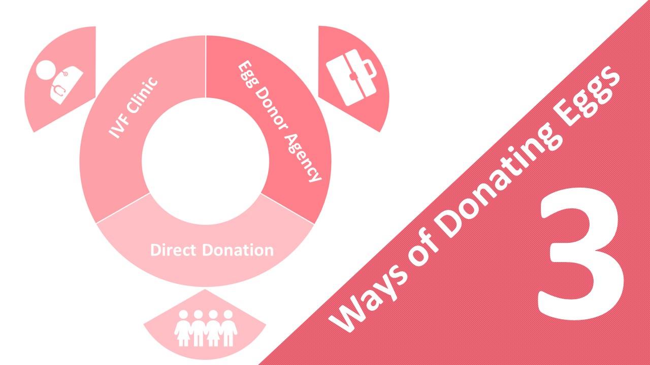 ways of donating eggs